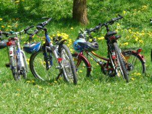 Fahrräder in der Natur